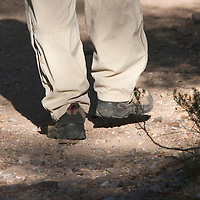 Hiker on a trail in Big Bend National Park, Texas.
