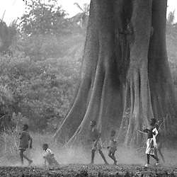 Boys play soccer underneath an enormous Bontang tree. Though the Fulani are a Muslim tribe, they also believe that this tree has a spirit. This mixture of animist beliefs and Islamic law creates a society which has a great respect for the land around them,  the supernatural world and the laws of God.