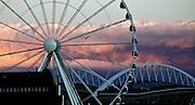 A bird flies around the Seattle Great Wheel at sunset, seen from the riverside on Alaskan Way. (Bettina Hansen/The Seattle Times)