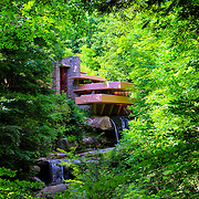 &quot;Shadows of Brilliance&quot;<br /> <br /> This lovely image of the wondrous architecture and landscape of the famous home Fallingwater is a fabulous vision with the large tree in the right front of the image, and the lush green woodlands that surround it during the summertime!!<br /> <br /> Laurel Highlands Area of Pennsylvania by Rachel Cohen