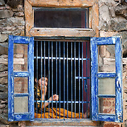 A young girl sits inthe window of her home in rainawari, on Dal lake.