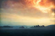 Morning fog in a rural area near my hometown - textured photograph<br /> Society6 products:https://society6.com/product/layers-of-silence_print#1=45<br /> REDBUBBLE products:<br /> http://www.redbubble.com/people/dyrkwyst/works/21389376-layers-of-silence?ref=recent-owner