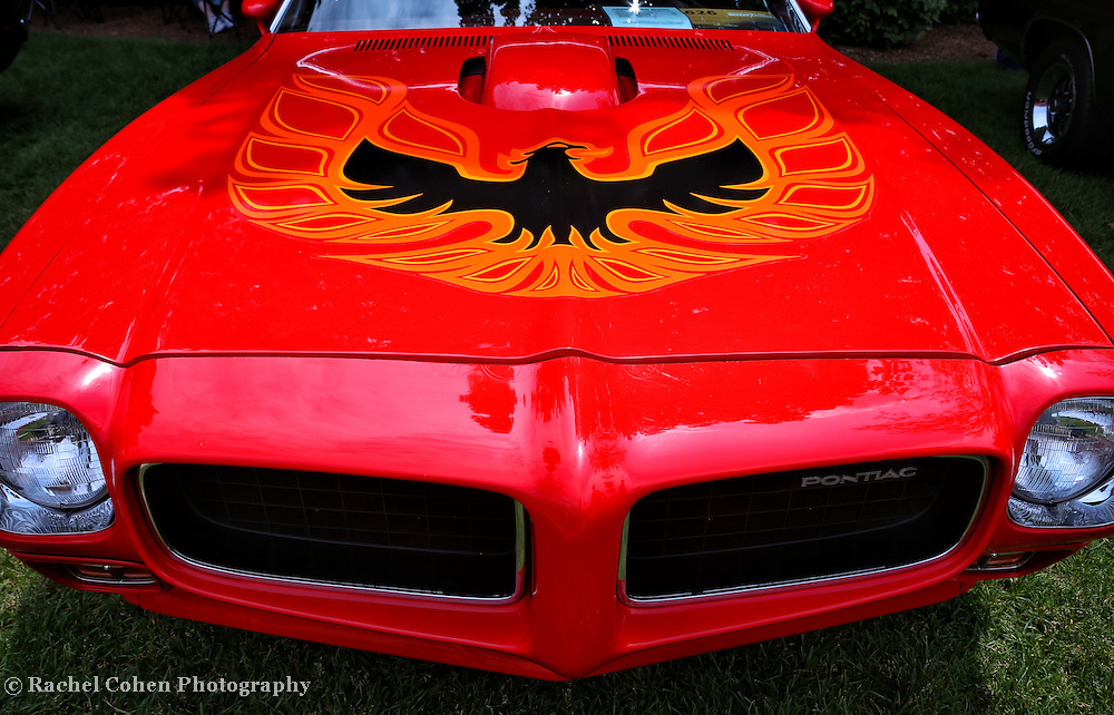 &quot;Light My Fire&quot;<br />