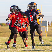 2013 Ashburn Youth Football League