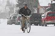 "SHOT 1/12/09 1:13:03 PM - A Crested Butte, Co. local rides his bike down Elk Avenue, the town's main street, during a snowstorm. Bikes are a popular form of transportation in the small mountain town even in the wintertime. Crested Butte is a Home Rule Municipality in Gunnison County, Colorado, United States. A former coal mining town now called ""the last great Colorado ski town"", Crested Butte is a destination for skiing, mountain biking, and a variety of other outdoor activities. The population was 1,529 at the 2000 census. The Colorado General Assembly has designated Crested Butte the wildflower capital of Colorado. The primary winter activity in Crested Butte is skiing or snowboarding at nearby Crested Butte Mountain Resort in Mount Crested Butte, Colorado. Backcountry skiing in the surrounding mountains is some of the best in Colorado. The mountain, Crested Butte, rises to 12,162 feet (3,700 m) above sea level..(Photo by Marc Piscotty / © 2009)"