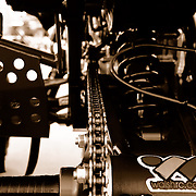 Sephia Rear - ATV Photoshoot - #119 Robert Kramar.