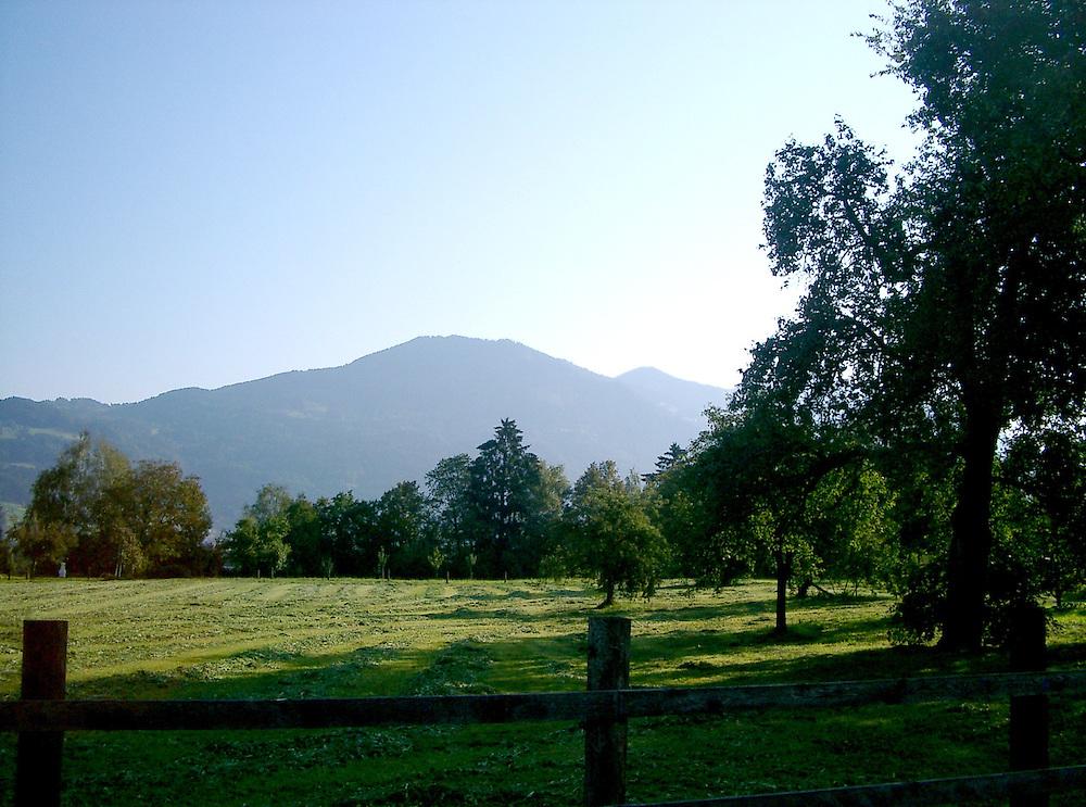 meadows in Austria