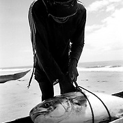 A fisher is very lucky, he has caught a big carangue in the sea that morning; it was a hard fight and the fish managed to destroy most of his net before he pulled it in. He was very happy because he sold the fish for more than he usually makes.