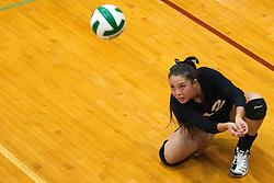 Hannah Mizuta at the Kuna Klassic volleyball tournament at Kuna High School, Kuna, Idaho, August 29, 2015.