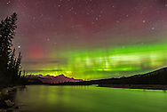 The Northern Lights over the Athabasca River in Jasper National Park, Alberta, Canada, on October 22/23 at about 1:30 am. I shot this from an access point to the Athabasca River by the bridge on Highway 93 on the Icefields Parkway. Pyramid Mountain is at left near the town of Jasper. Vega is the bright star at left; the Big Dipper is at right.<br /> <br /> The image is a stack of 10 exposures for the ground, mean combined to smooth noise and to smooth the water, and one exposure for the sky and aurora. All 15 seconds at ISO 1600 at f2 with the Sigma 20mm lens and Nikon D750.