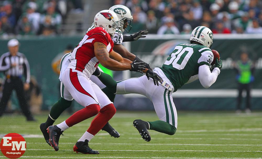 Dec 2, 2012; East Rutherford, NJ, USA; New York Jets free safety LaRon Landry (30) intercepts a pass from Arizona Cardinals quarterback Ryan Lindley (14) during the first half at MetLIfe Stadium.