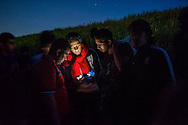 Syrian refugees get directions on their phone while traveling through the woods near the Hungarian border on June 2, 2015 in Martonoš, Serbia. The group walked several miles along the Tisza river at sunset to pass through the border with Hungary at night to avoid the police. Refugees seeking asylum are passing through routes in Eastern Europe in greater numbers. Ann Hermes/© The Christian Science Monitor 2015