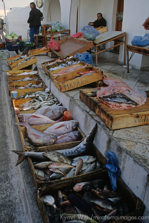 Europe, Mediterranean, Aegean, Greece, Greek Islands, Santorini, Thira. Fresh catch of fish for sale by local Greek fishermen in Santorni.