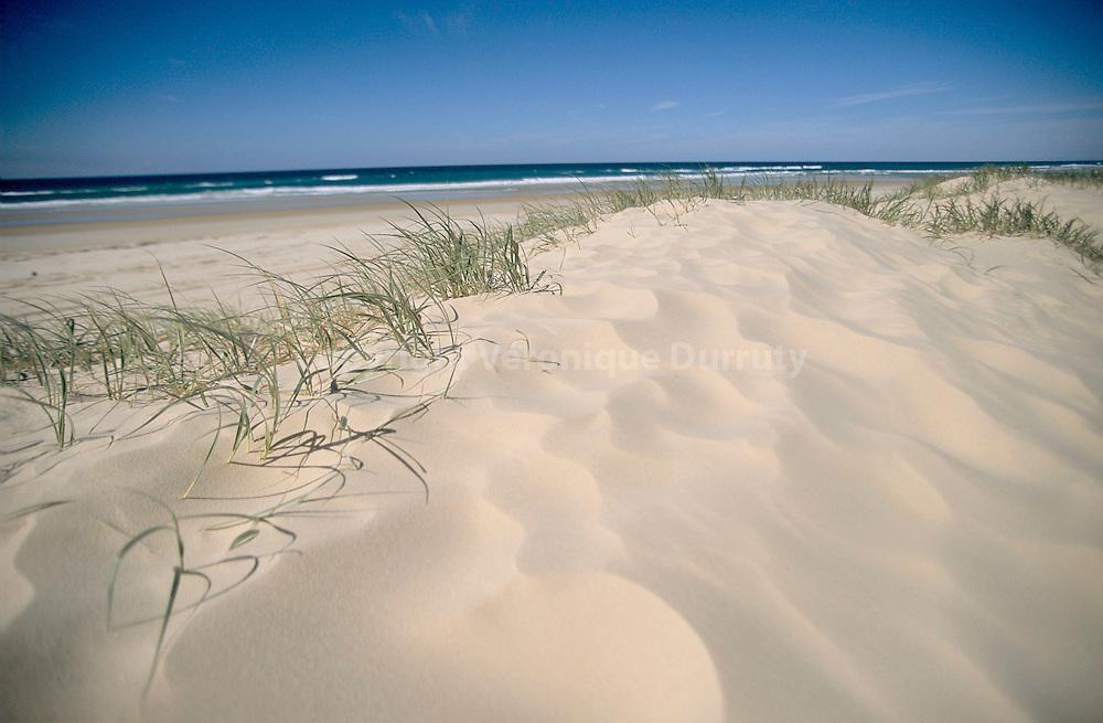 Fraser Island est considerée comme la plus grande ile de sable du monde...Fraser Island est considerée comme la plus grande ile de sable du monde.