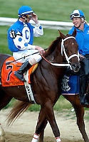 Smarty Jones with Stewart Elliot aboard prepare to enter the starting gate for the 129th Preakness Stakes, Baltimore, MD on May 15, 2004.  Photo: Jeff Snyder