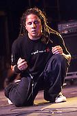 10/3/2002 - POD in Concert