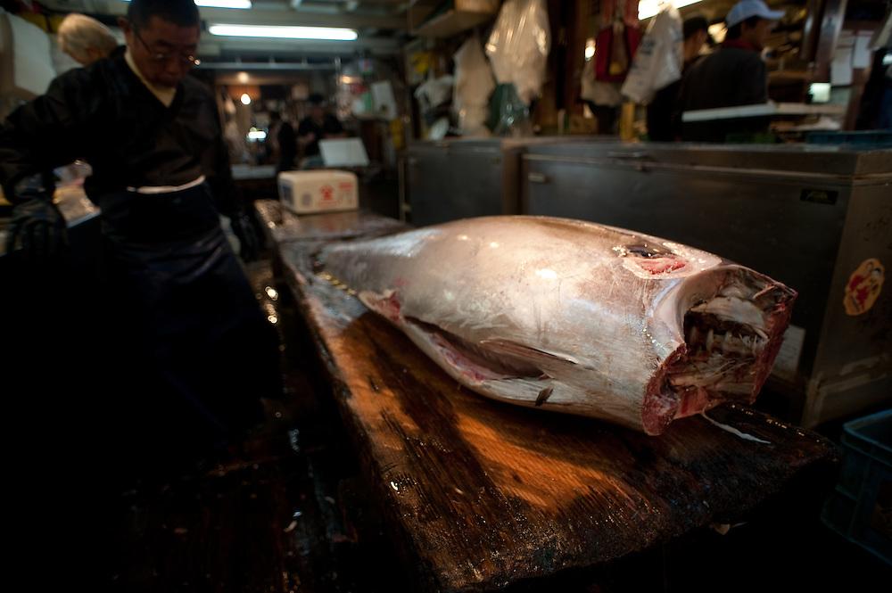 Yellowfin tuna, cleaned