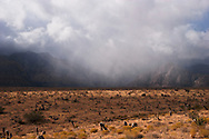 Rain Over Mountains, Red Rock Canyon, Nevada
