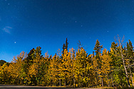 The Big Dipper with its handle pointing left in an arc to Arcturus in the northwest on a moonlit autumn evening at Elbow Falls, in Kananaskis Country, Alberta.<br /> <br /> This is a single 20-second exposure at f/2.5 with the 24mm lens and Nikon D750 at ISO 800.
