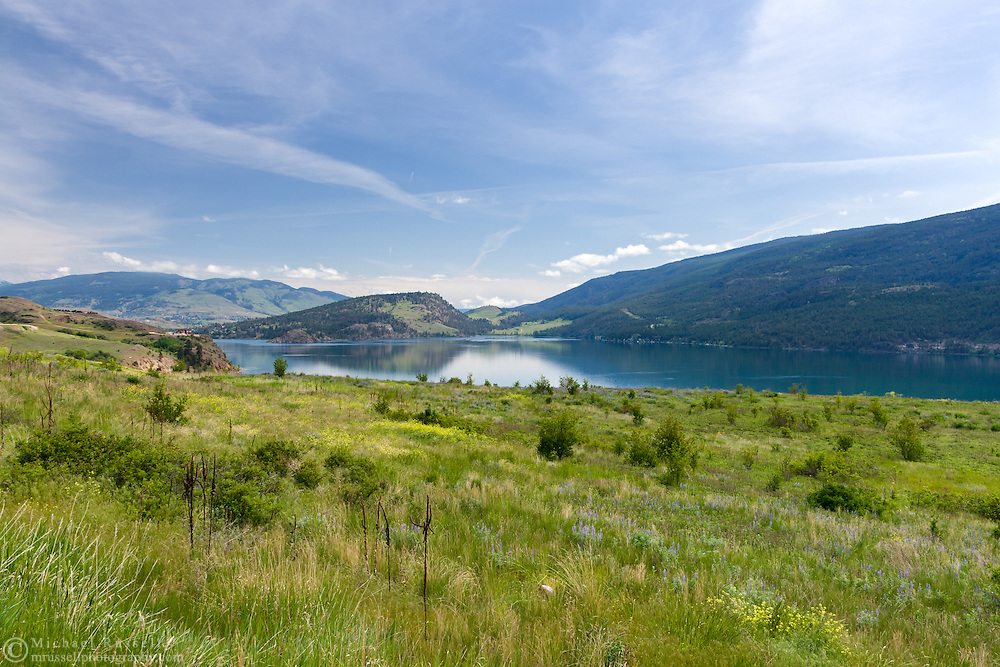 Spring foliage and flowers near Kekuli Bay Provincial Park and Kalamalka Lake in Vernon, British Columbia, Canada
