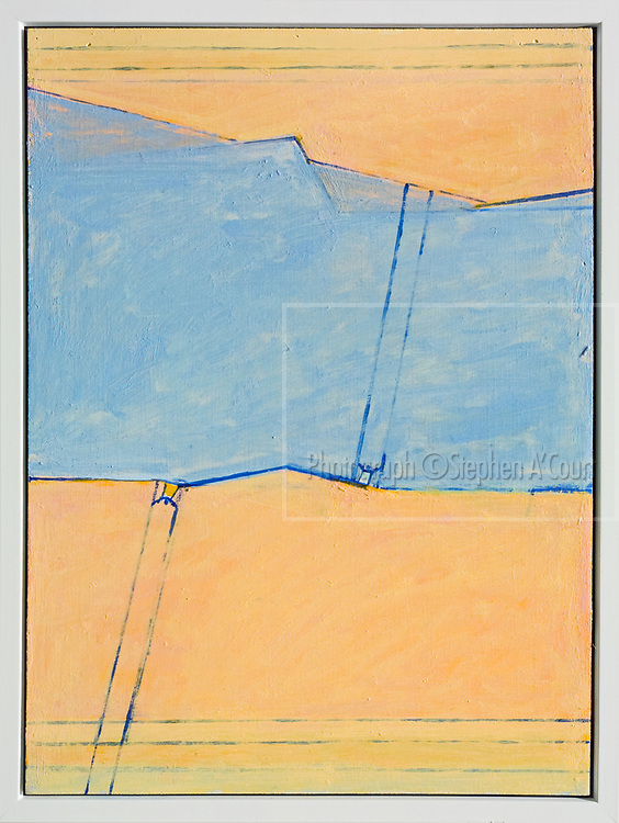 The work of Bowen Galleries' represented artist Riduan Tomkins.