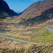 Long Winding Roads