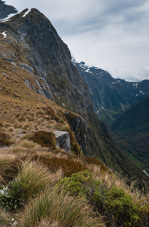 Grass tussocks and alpine plants near the sheer face of Twelve Second Drop, Mackinnon Pass, showing its descent in to Staircase Creek, Fiordland, New Zealand