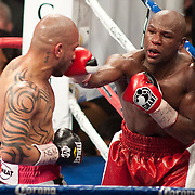 Mayweather v Cotto
