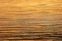Golden ripples reflecting the sunset on the sea, Fiji