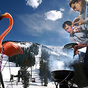 SHOT 3/22/2004 - Friends Brian Brill (left) of Blue River and Amy Kirchner of Breckenridge, Co. grill out on The Beach at Arapahoe Basin Monday afternoon after a day of skiing and snowboarding. With temperatures in the 50's and plenty of sun, spring conditions are in full force at all of the Colorado ski resorts. The flamingo belongs to Kirchner and she said it has traveled all over the country with her. The Beach is a popular apres-ski party area at Arapahoe Basin..(Photo by Marc Piscotty/ © 2004)