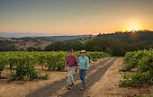 Oregon - Meredith Mitchell Vineyards