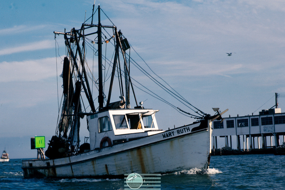 Flounder fishing boats