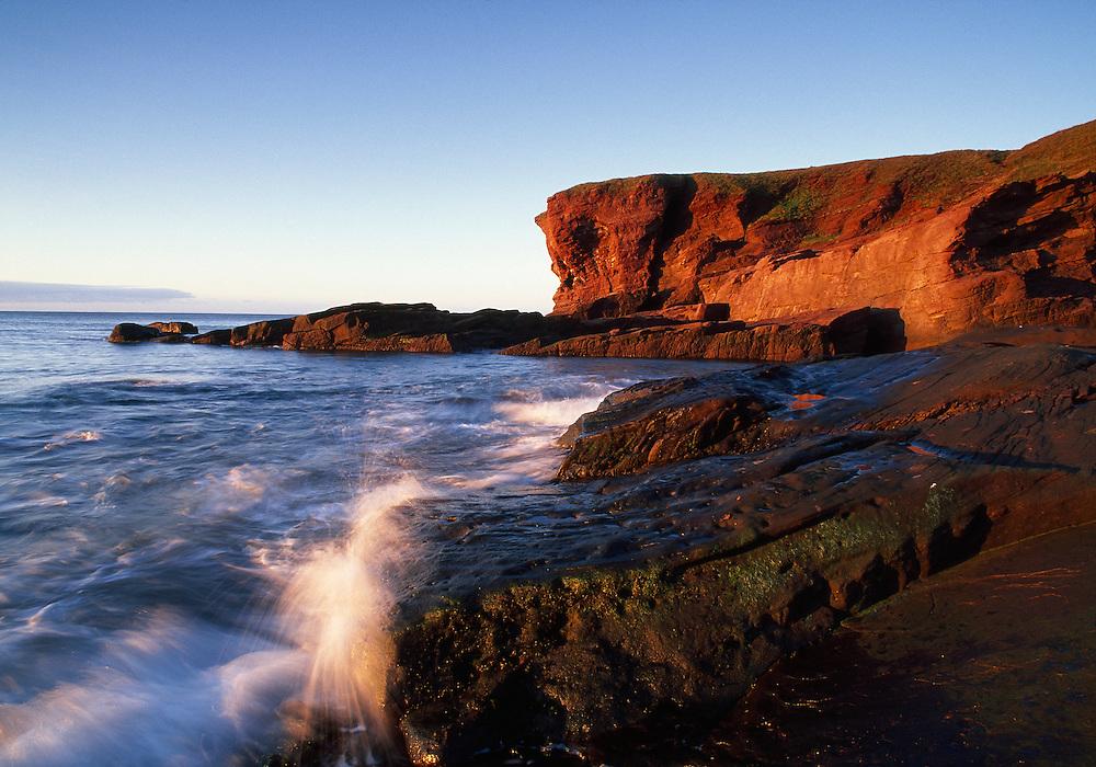 Seaton Cliffs, Arbroath, Scotland