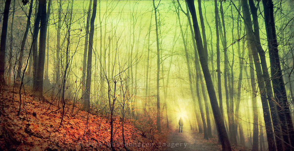Man standing on a forest path on a foggy winter day.<br /> Textured photo.<br /> <br /> Prints, iPhoneCases / iPad.LapTop-Skins &amp; more: http://society6.com/DirkWuestenhagenImagery/no-standstill_Print