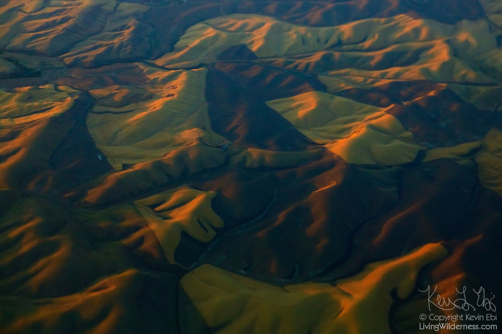 Seen from the air, the rolling hills of Walla Walla, Washington look like giant, patch-work dunes. The rolling hills of Eastern Washington were formed by massive floods near the end of the last ice age as a ice dam holding back billions of gallons of water over present-day Missoula, Montana would regularly break, releasing a torrent of water that scoured and shaped the landscape.