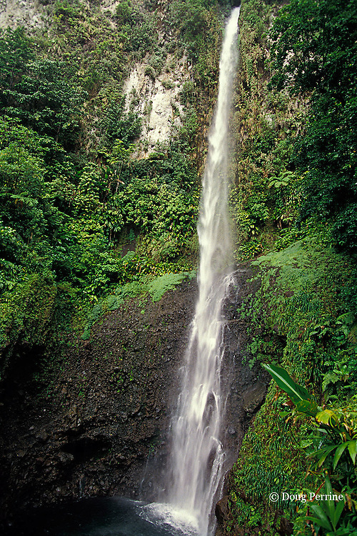 Middleham Falls, Commonwealth of Dominica ( Eastern Caribbean )