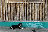 Daily Life: San Miguel, Cajamarca