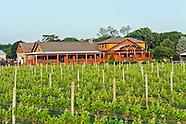 Vineyards North Fork
