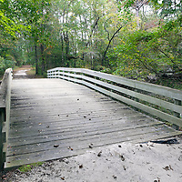 NC00498-00...NORTH CAROLINA - Reconstructed Bridge over Moores Creek in Moores Creek National Battlefield.