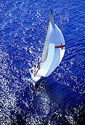 Aerial image of a sailboat off the coast of Fort Lauderdale, Florida, American Southeast, model and property releases may be available upon request