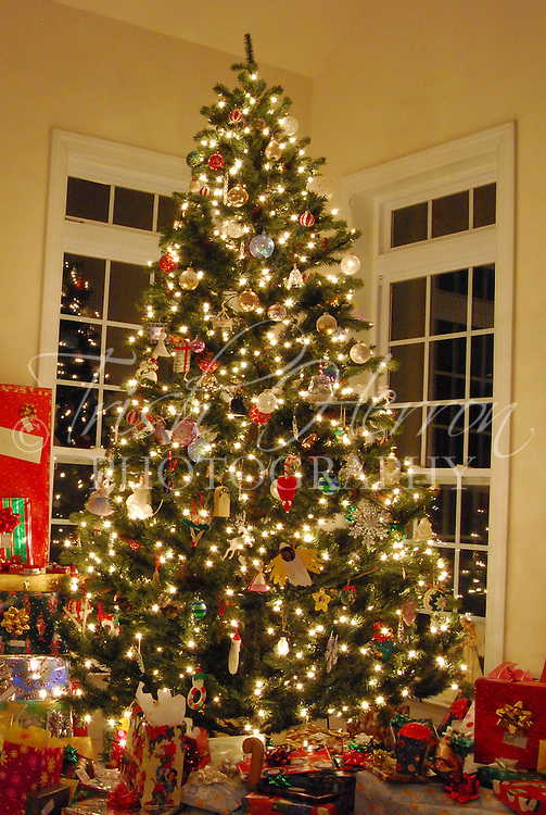 A Christmas tree is surrounded by gifts on Christmas Eve.