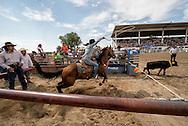 Crow Fair Rodeo, Crow Indian Reservation, Montana, Katrina Wells, Ladies Breakaway Roping