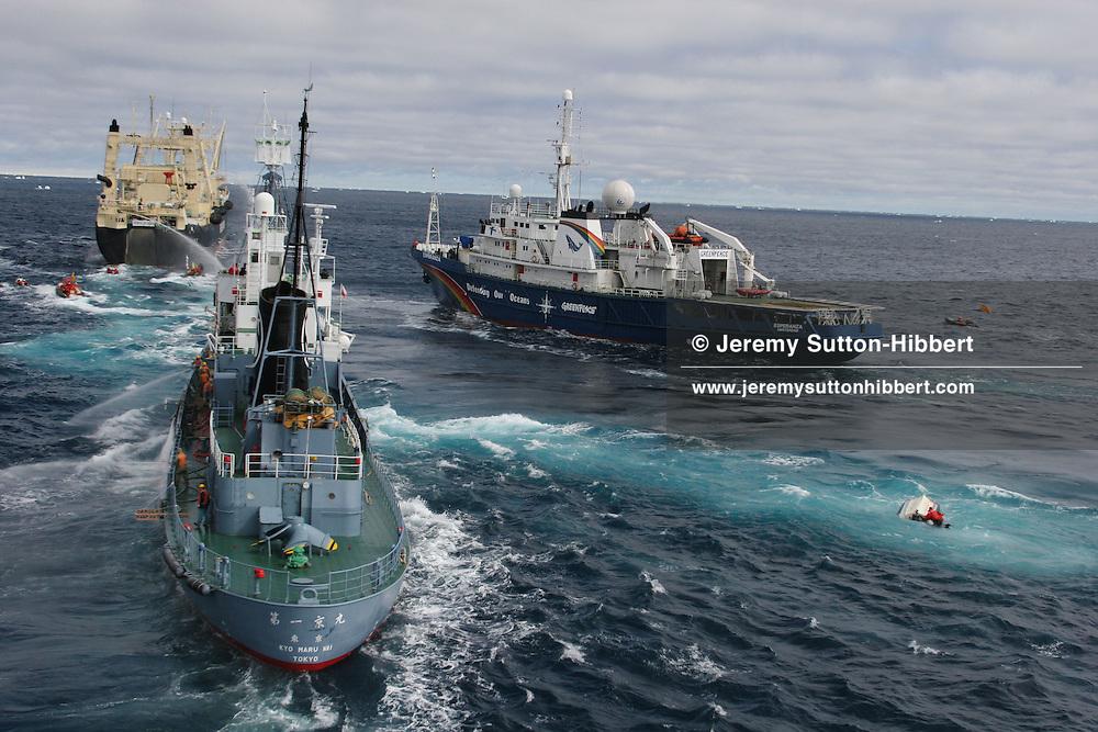 The whaling debate