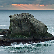 A rock island hosts birds offshore from Cape Flattery, the northwesternmost point of the contiguous United States. Cape Flattery can be reached from a short walk on boardwalks and trail in Clallam County on the Makah Reservation, Washington. Here the Strait of Juan de Fuca joins the Pacific Ocean. Offshore of the Olympic Peninsula, the Olympic Coast National Marine Sanctuary extends from Cape Flattery in the north to Copalis River in the south.