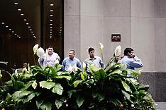 New York, June 2009