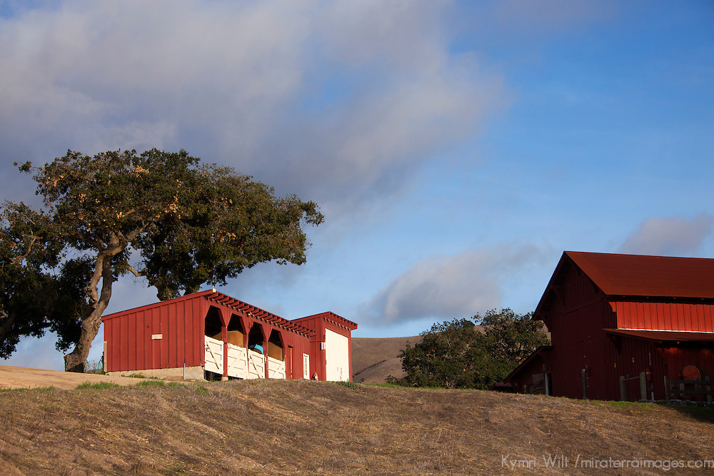 USA, California, Carmel. Holman Ranch Stables.