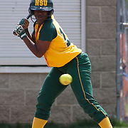 04/21/12 Dover Del. Norfolk State Danielle Wright #17 takes a strike in the first inning of a NCAA Softball game against Delaware State Saturday, April. 21, 2012 at The Hornets Nest in Dover Del.<br /> <br /> Delaware State defeated Norfolk State 10-0 Saturday afternoon.<br /> <br /> Special to The News Journal/SAQUAN STIMPSON