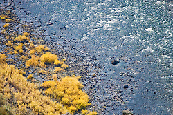 Autumn grasses and bushes along the Grande Ronde River, Blue Mountains, Asotin County, Washington, USA