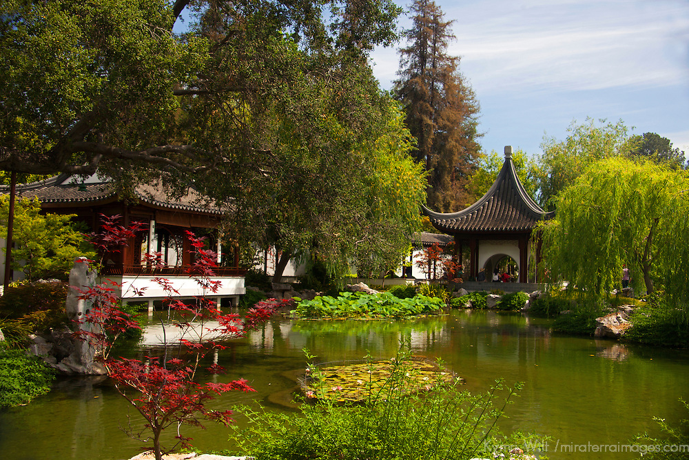 USA, California, San Marino. The Huntington Library Chinese Gardens.