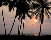 Pacific Islands: Hawaii